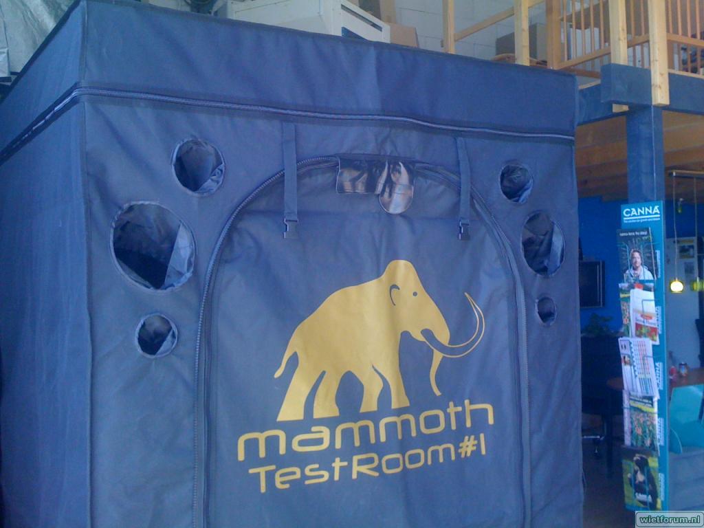 Wietforum Mammoth testroom kweektent growtent