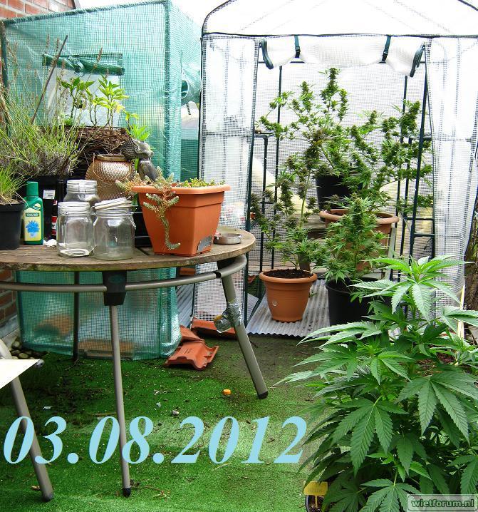 gallery_6979_13329_133304.jpg