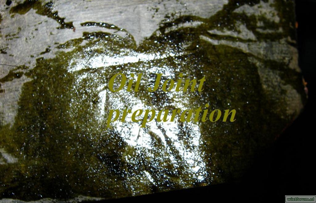 gallery_6979_9442_104796.jpg