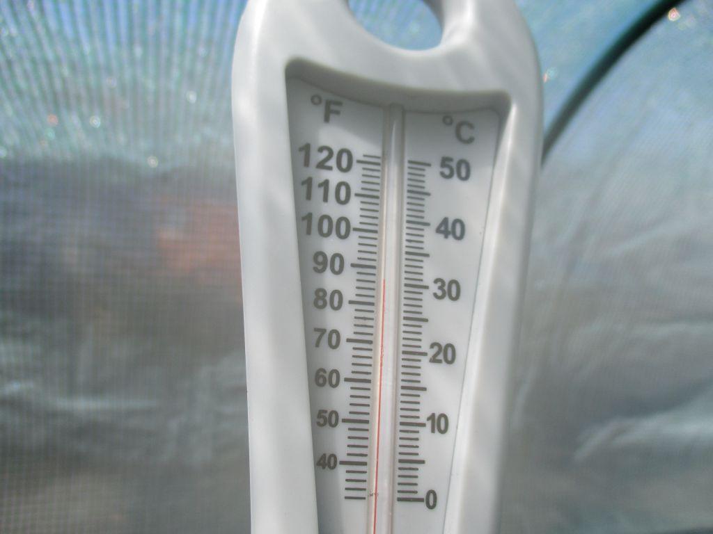 temperatuur in mijn serre bij 14 graden :o
