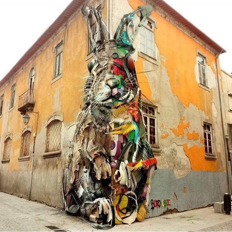 Bardalo's rabbit in Porto.jpg