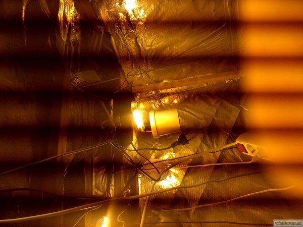 Westvoorne-20120423-00089.jpg