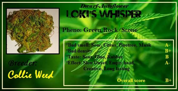 Lokiwhisper rockstone green