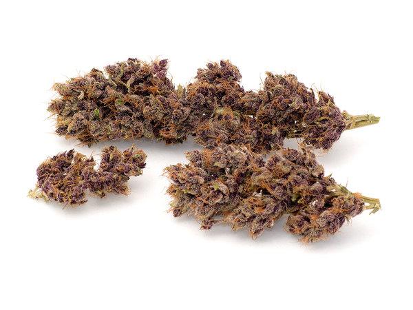 Buckeye Purple - Omnipotent voeding
