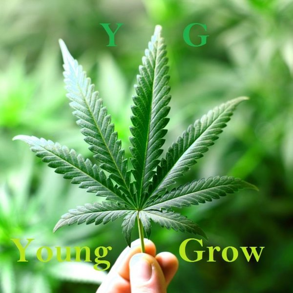 Young Grow