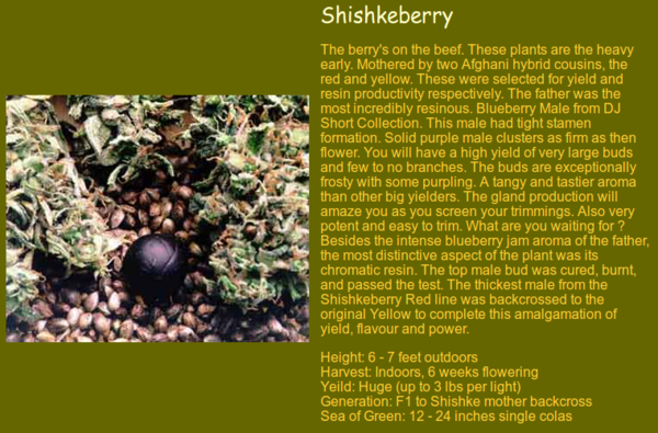 Shishkeberry