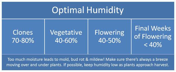cannabis humidity chart
