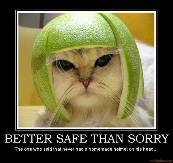 better safe than sorry better safe than sorry Cat helmet
