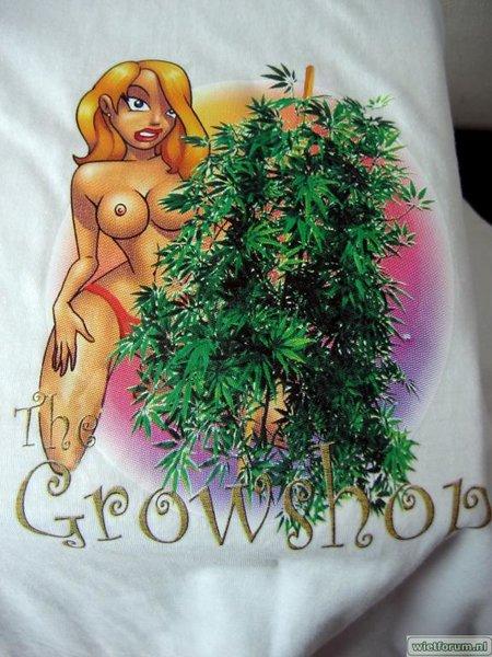 AS Grow test Air-A-Way The Growshop -3-.jpg