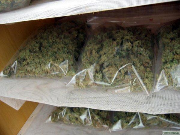 Grow Aptus Amn einde kweek -65-.jpg