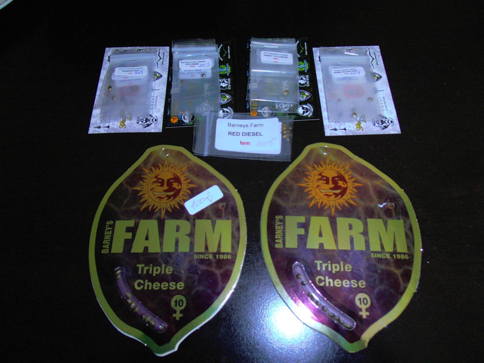 Triple Cheese - Barney's Farm - 2019.JPG