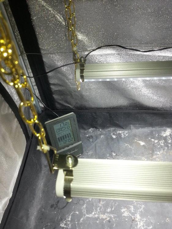 DP90 LED 2.jpg