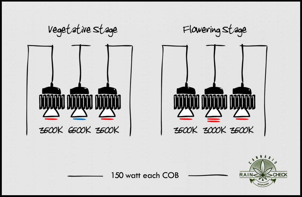 lights.jpg.8ccb4c9c54d69e55df9eb057d290ff90.jpg