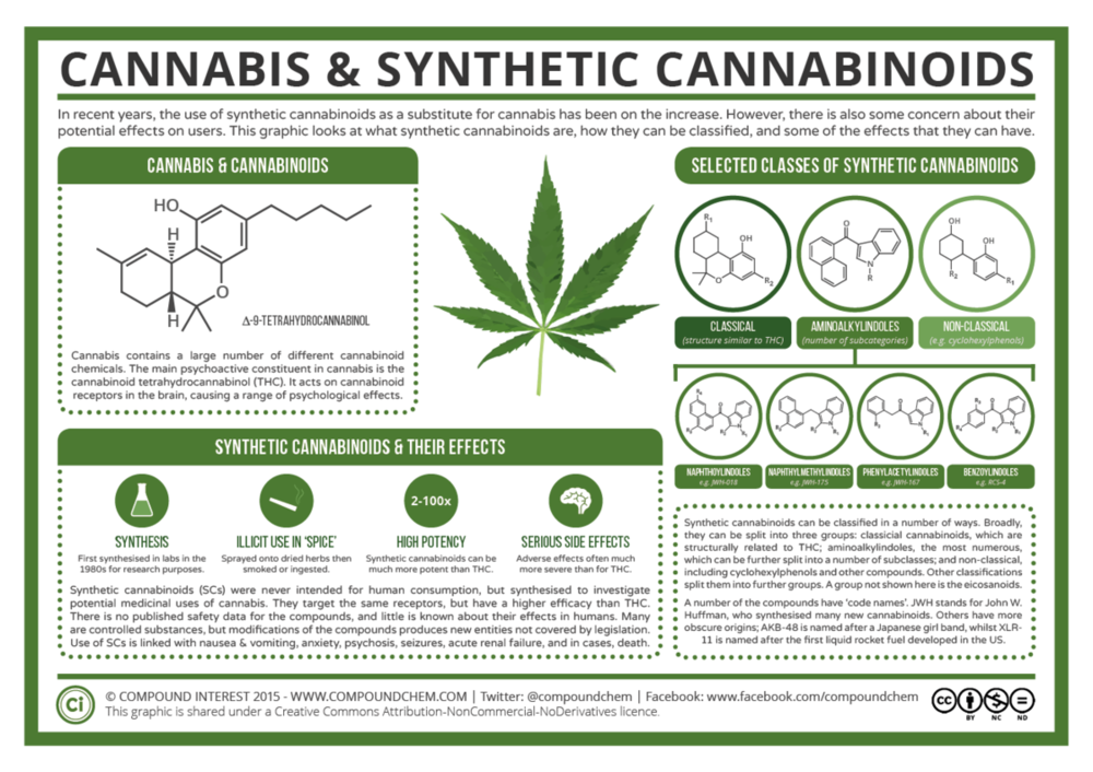 Cannabis-Synthetic-Cannabinoids.thumb.png.4e618f52ace42744859afdb939a82651.png
