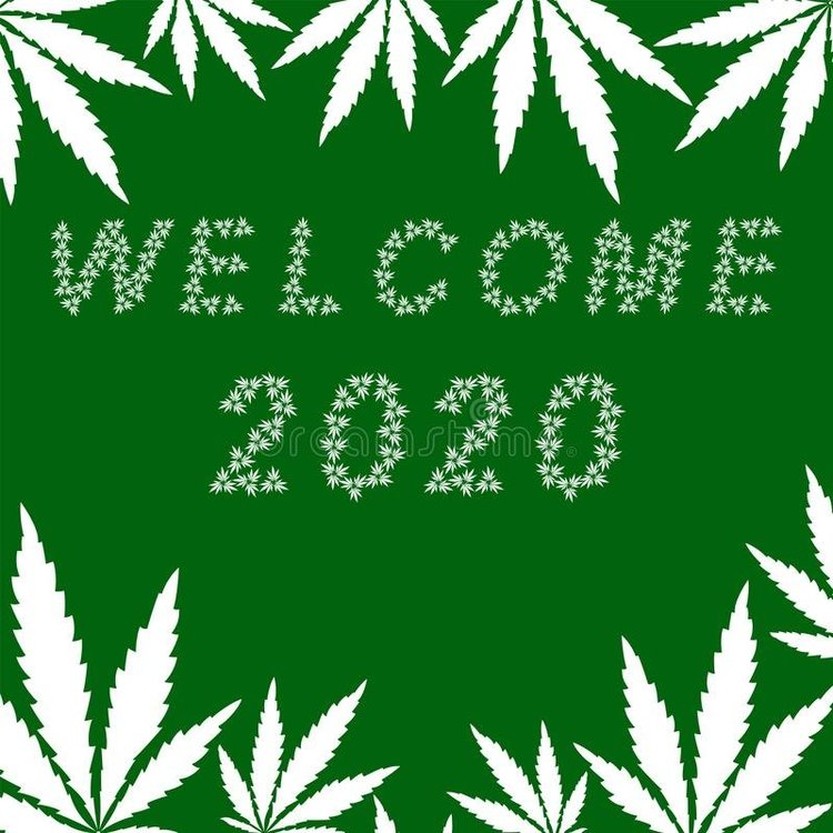 welcome-greeting-card-happy-new-year-banner-letters-white-cannabis-leaves-green-background-vector-illustration-134790759.thumb.jpg.1a3bcdb2360d25918d3f1695e07e342d.jpg