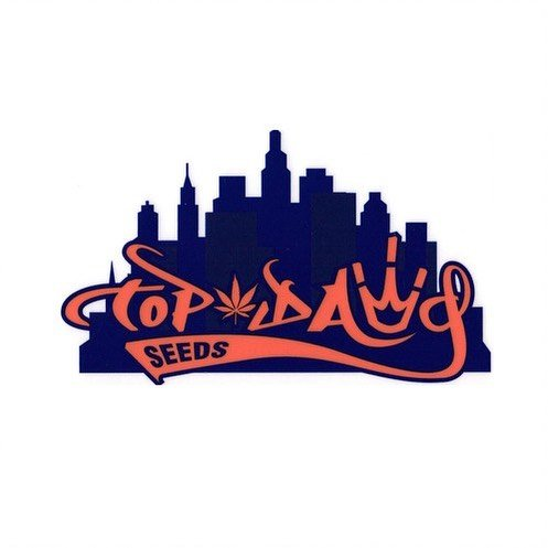 Top-Dawg-Seeds-Logo.jpg.020a226467c8d9921c9fbfb2639e9eaf.jpg