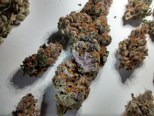 Purple mix 01.jpg