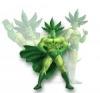 Plantformer